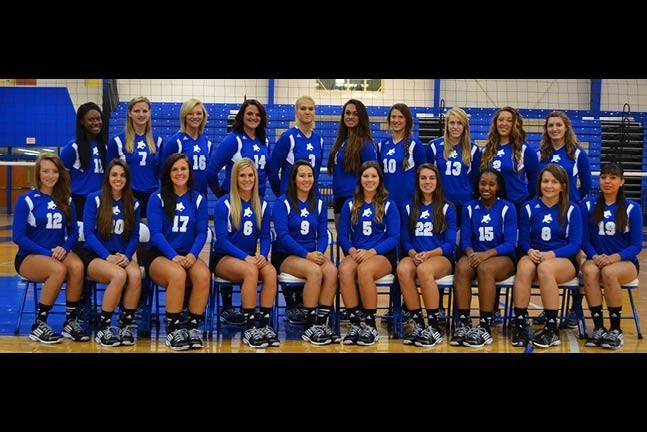 2014 Bobcat Volleyball Team